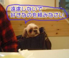 20070317mamas0-1.jpg