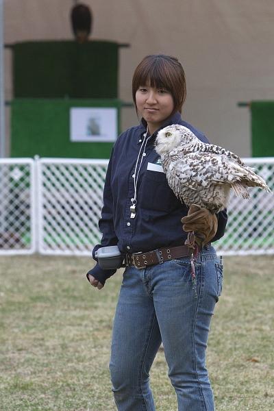 bird1_4861.jpg