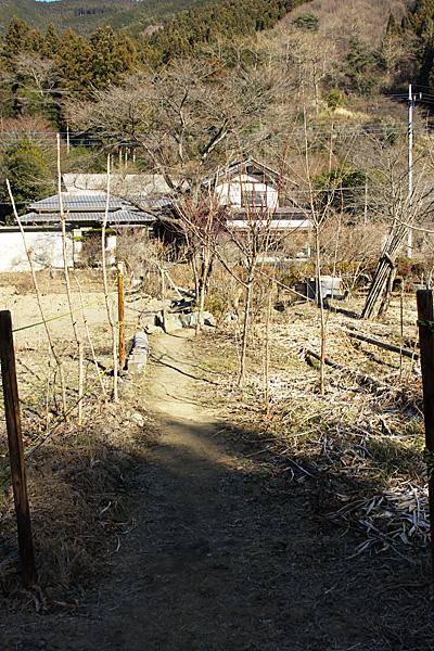 fujioka_2690.jpg