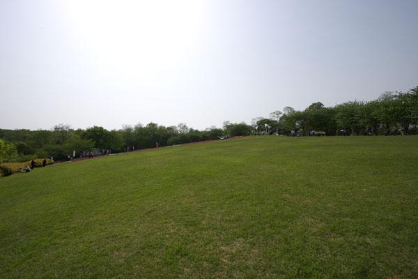 fujioka_7517.jpg