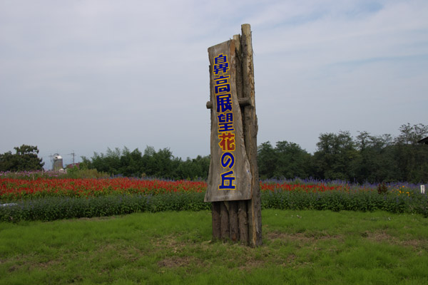 hanataka_0229.jpg
