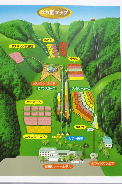 iwakura_9650.jpg