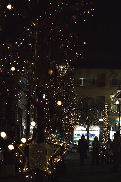 kagohara_5621.jpg