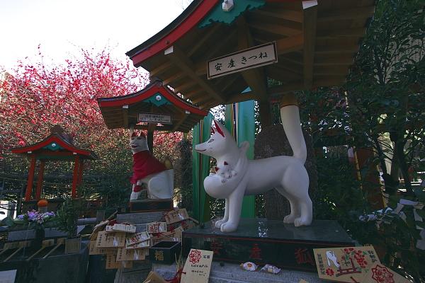 kanmuriboke3_0257.jpg