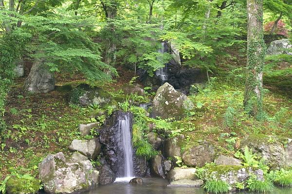 kichi1_7521.jpg