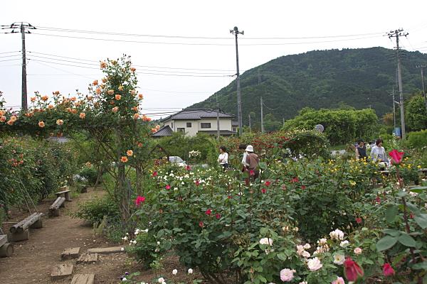 moroyama_2023.jpg