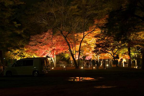 nagatoro1_4983.jpg