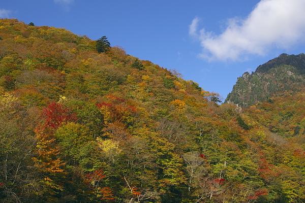 nishi1_3221.jpg