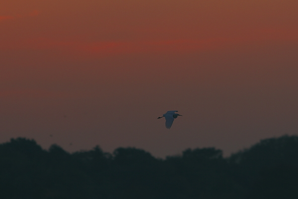 sunset_5284.jpg