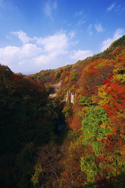 yuki1_4108.jpg