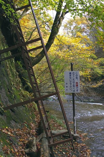 yuki3_4160.jpg