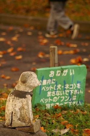 わんの石像の秋