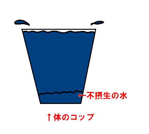 20070312222851.jpg