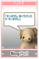 20051018040323.jpg
