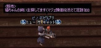 20051201180324.jpg