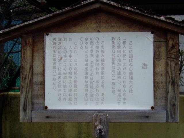 なぜか主なき外来動物の舎・天王寺