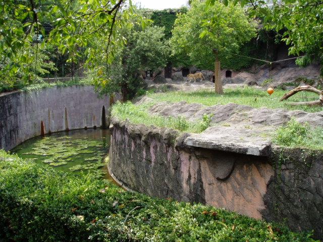 ハーゲンベック型無柵放養形式ライオン舎