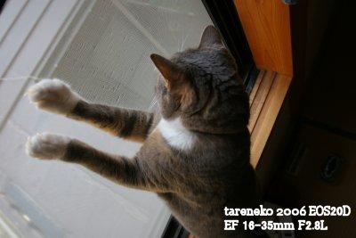 20061103-6blog.jpg