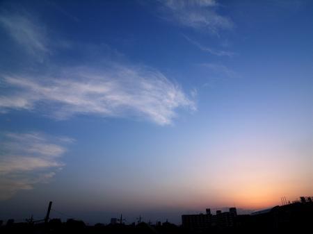 20070514-5.jpg