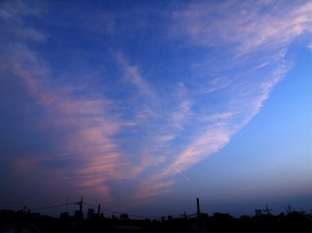20070514-6.jpg