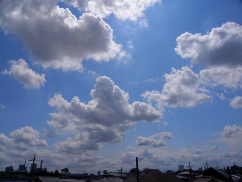 20070604-4.jpg