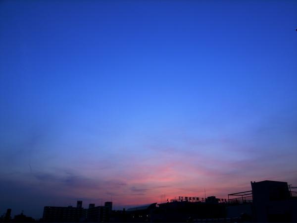 20070605-4.jpg