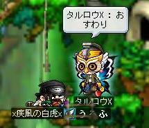 Maple0200.jpg