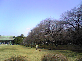 20070310_2.jpg