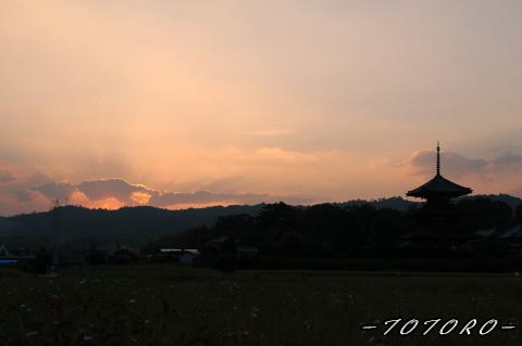 06houkizi-y002.jpg