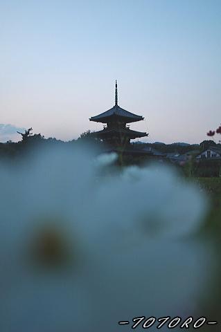 06houkizi-y003.jpg