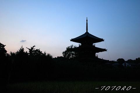 06houkizi-y004.jpg