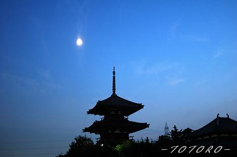 06houkizi-y005.jpg
