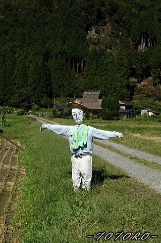 06miyama-aki013.jpg