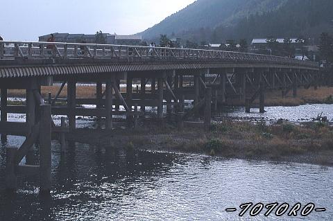 07arasiyama001.jpg