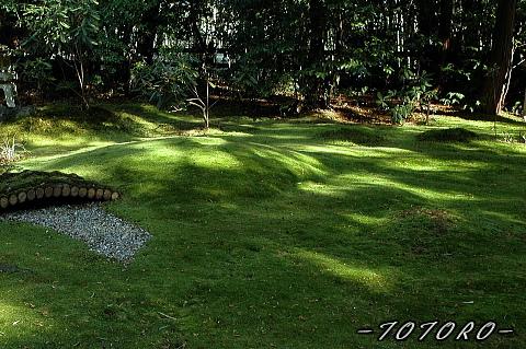 07arasiyama017.jpg