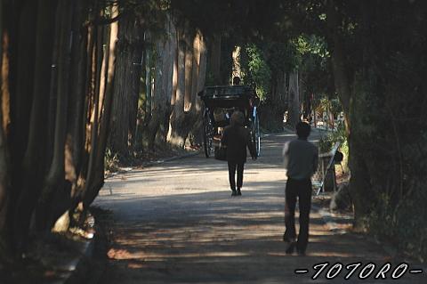 07arasiyama020.jpg