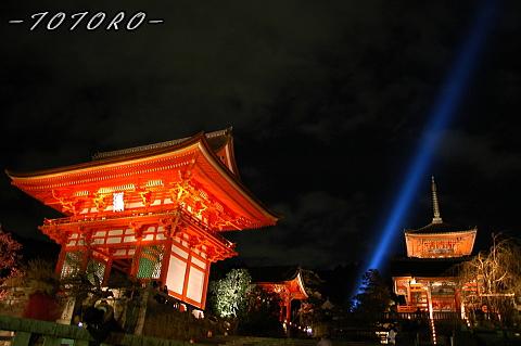 07hanatouro003.jpg