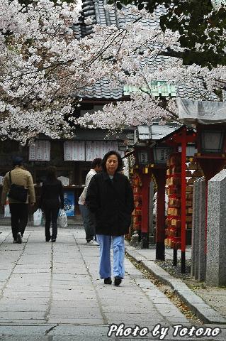 higasiyama1-001.jpg
