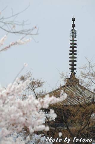higasiyama1-004.jpg
