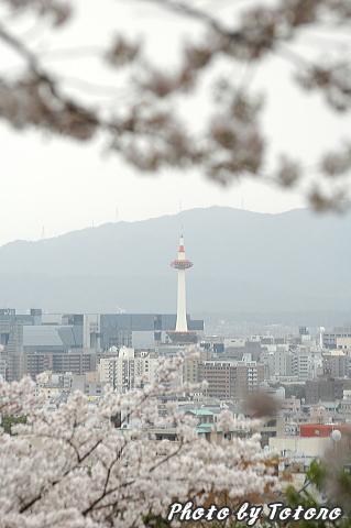 higasiyama1-006.jpg
