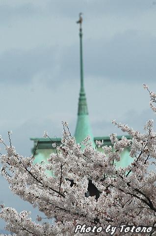 higasiyama1-013.jpg