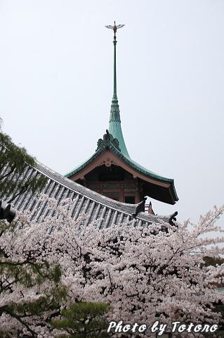 higasiyama1-016.jpg