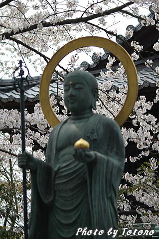 higasiyama1-017.jpg