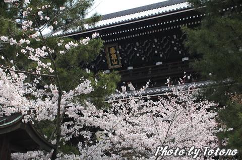 higasiyama1-022.jpg