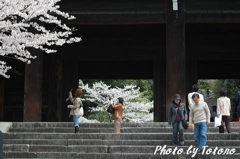 higasiyama1-023.jpg