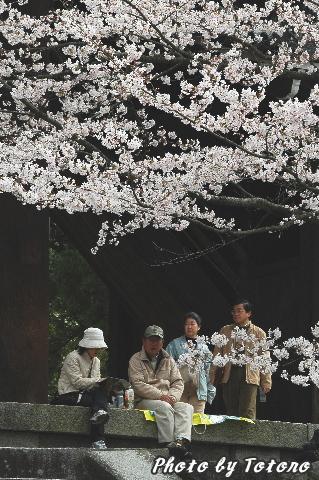 higasiyama1-025.jpg