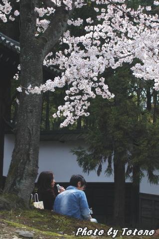 higasiyama1-026.jpg