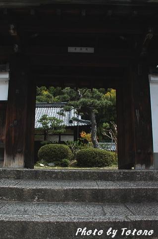 higasiyama1-027.jpg