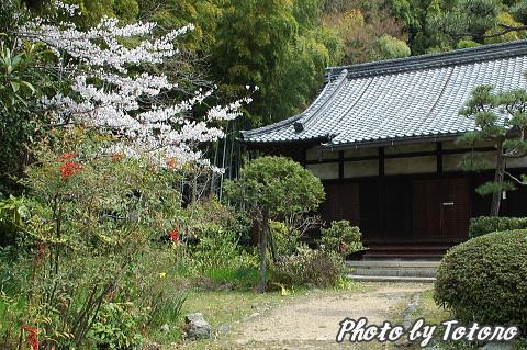 higasiyama1-028.jpg