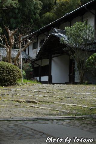 higasiyama1-029.jpg